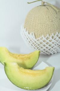 melon01