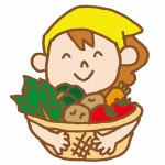 野菜の作り方に失敗しないためには?/経験者が語る!!